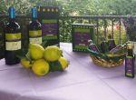 Olio extravergine di oliva siciliano del Borgo Pida